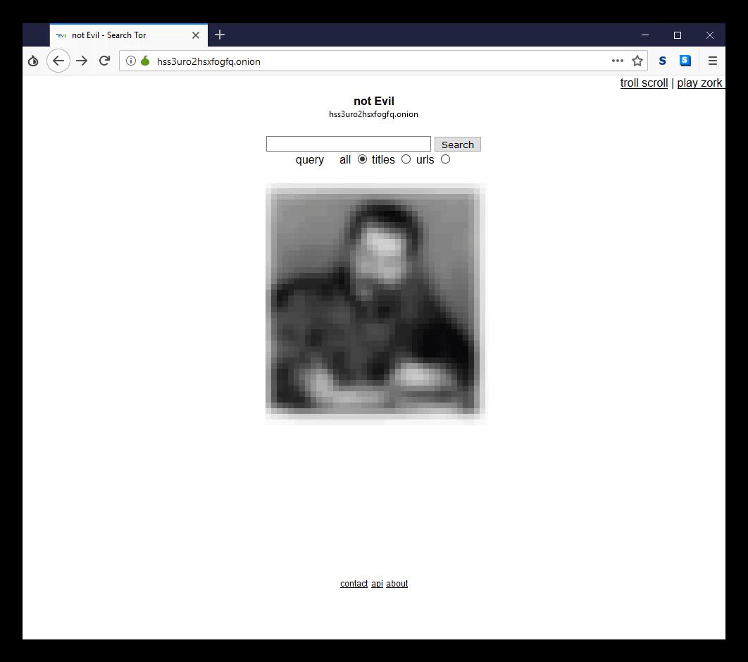 Общий вид поисковика not Evil в Tor Browser