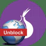 Прозрачный обход блокировок через Tor
